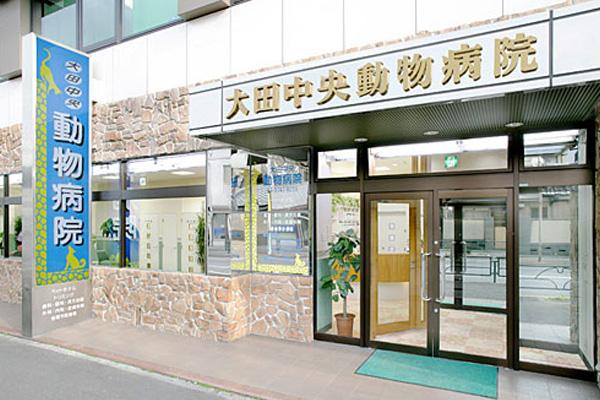 大田中央動物病院のトリマー募集(正社員)画像