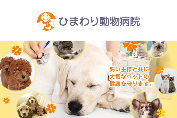 ひまわり動物病院の獣医師募集(アルバイト・パート)画像