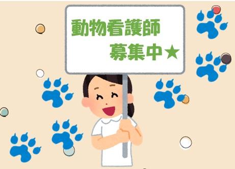 三軒茶屋アニマルクリニックの動物看護師募集(正社員)画像