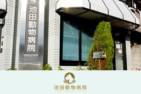 池田動物病院 成城通り病院の動物看護師募集(アルバイト・パート)画像