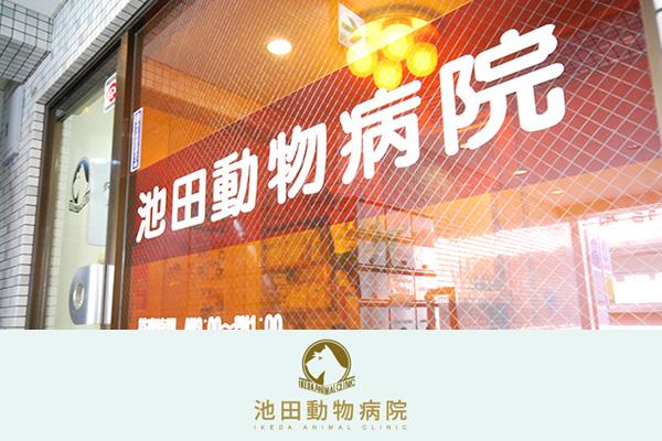池田動物病院 祖師谷通り病院の動物看護師募集(アルバイト・パート)画像