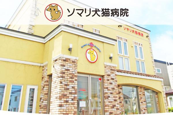 ソマリ犬猫病院の獣医師募集(正社員)画像