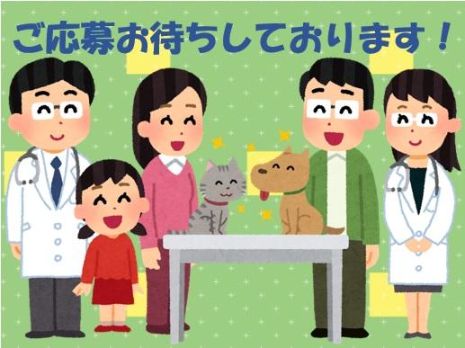 ★動物看護師(正社員)★未経験&経験者どちらも歓迎!!前向きに取り組んで下さる方を募集♪画像