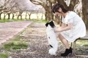 TOP PET@Breeder 埼玉店の一般事務募集(アルバイト・パート)画像