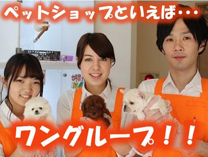 <<ペットスーパーWAN札幌店でショップ店員(正社員)の募集>>の画像