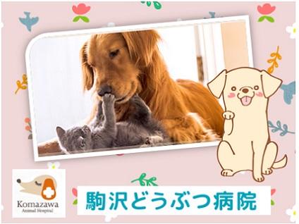 """""""動物と飼い主様に優しく"""" がモットーです!の画像"""