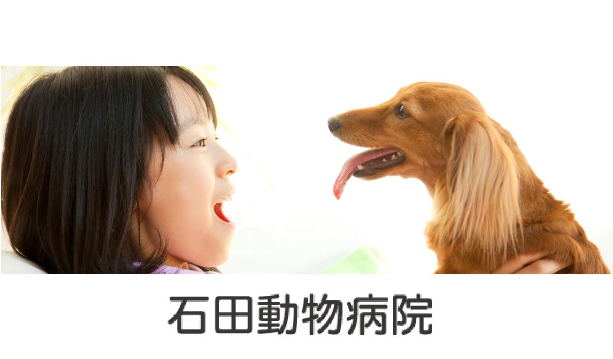 *☆『石田動物病院』の動物看護師(アルバイト・パート)を募集しています[鈴鹿市磯山]☆*画像