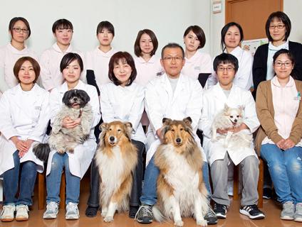 *⇔*たなか動物病院で『動物看護師・正社員』の募集*⇔*画像