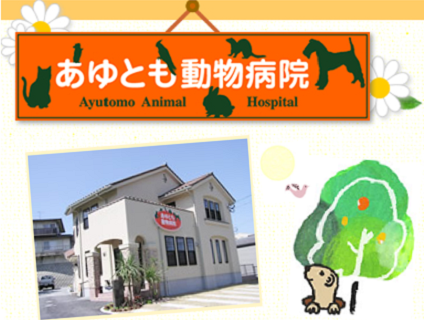 ゚*oあゆとも動物病院o*゚ 動物看護師を募集中です!【正社員*小倉南区沼緑町】画像