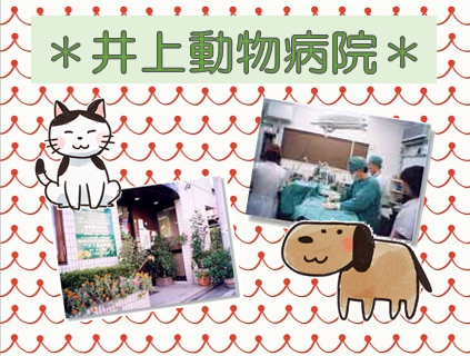 \\急募中//【井上動物病院】動物看護師さん(正社員)の募集中[無資格未経験OK]画像