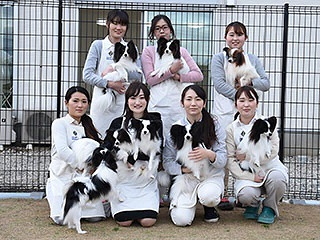 TOP PET@Breeder 埼玉店のショップ店員募集(正社員)画像