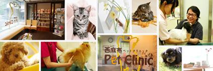 有限会社LEO 西麻布ペットクリニック画像
