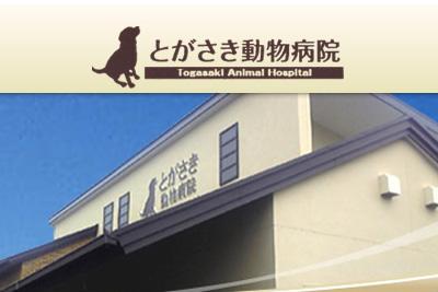 有限会社戸ヶ崎動物病院画像