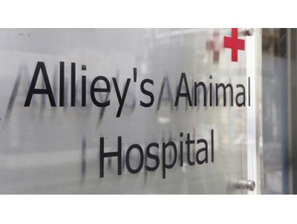 アリーズ動物病院の画像