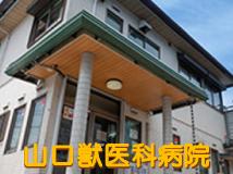 山口獣医科病院の画像
