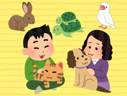 清田動物病院画像
