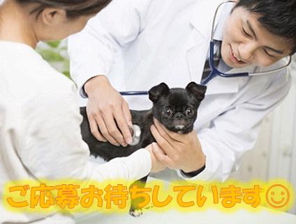 JOY動物病院画像