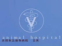 夜間救急動物病院目黒画像