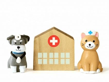 藤沢台動物病院画像
