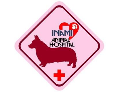 いなみ動物病院の画像