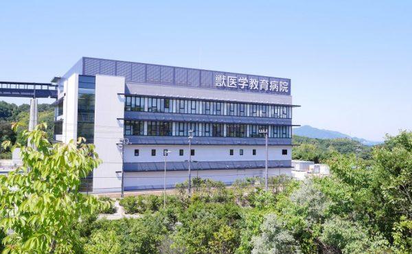 学校法人加計学園 岡山理科大学 獣医学教育病院の画像