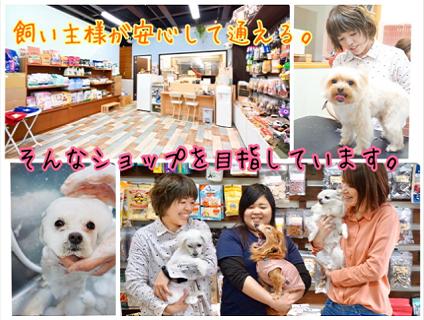 ペットのスマイル天白店画像