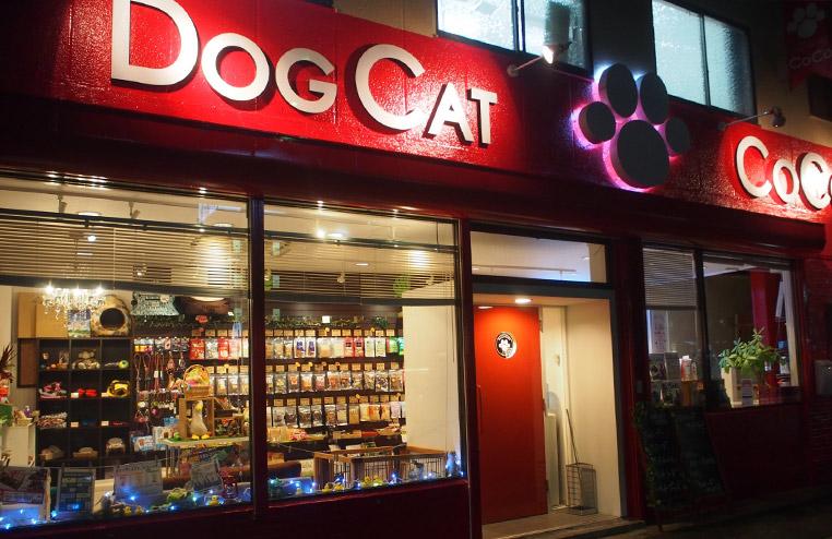 DOGCAT COCO画像