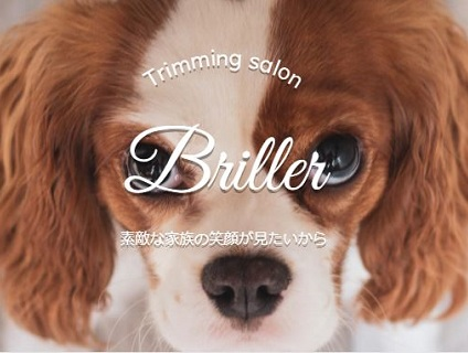 Briller(ブリエ)画像