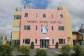 はやし動物病院[新卒]画像