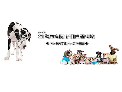 21動物病院 新目白通り院の画像