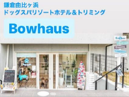 BowHaus(バウハウス)画像
