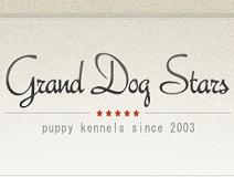 GRAND DOG STARS(グランドッグスターズ)画像