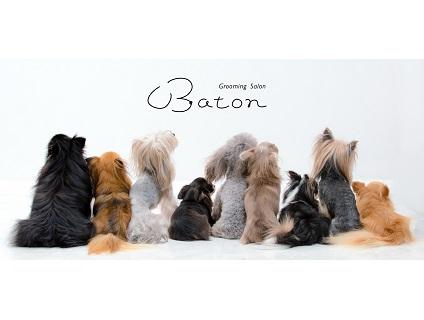 Grooming Salon Baton画像