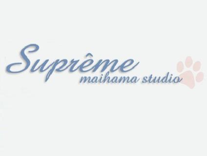 シュプリーム舞浜スタジオ画像