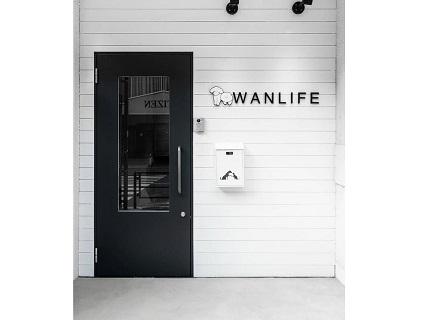 DOG RESORT WANLIFE/株式会社オリンエンティスの画像