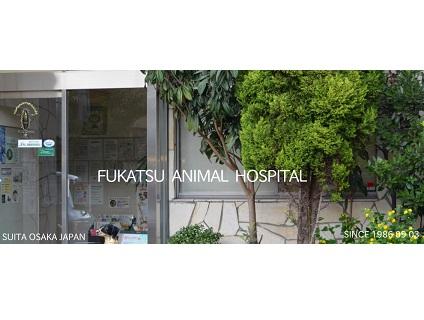 フカツ動物病院画像