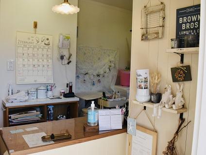 dog's salon flower(ドッグサロンフラワー)の画像