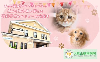 大倉山動物病院の画像