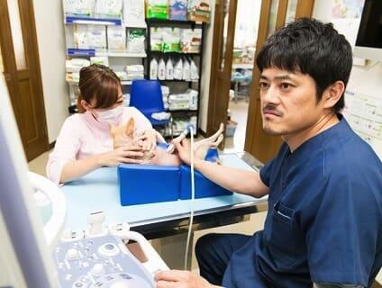 宮川どうぶつ病院の画像