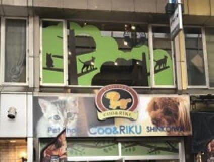【Coo&RIKU(クーアンドリク) 新小岩店】トリマーさん(アルバイト・パート)募集中♪[東京都葛飾区]画像