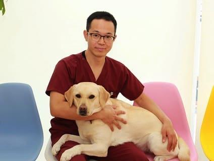 【たいち動物病院】◇◆動物看護師さんを募集中◆◇【アルバイト・パート】【愛知県名古屋市天白区】画像
