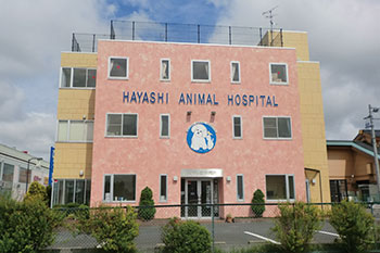 はやし動物病院[新卒]の画像1