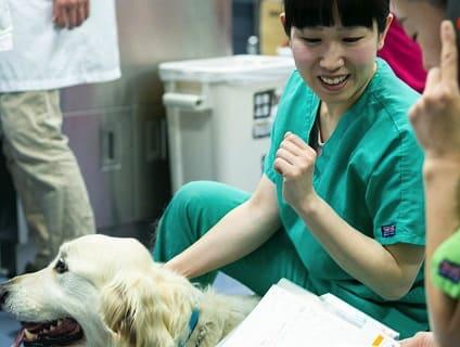 〔辻堂犬猫病院〕◆受付・事務スタッフ募集中◆正社員◆神奈川県藤沢市◆画像