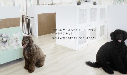 【BELLWOOD PET HOTEL & SPA】トリマー募集/正社員/東京都大田区画像