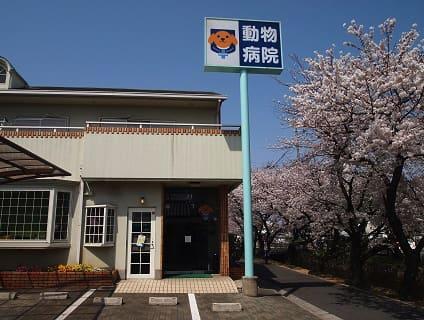 塩田動物病院の画像