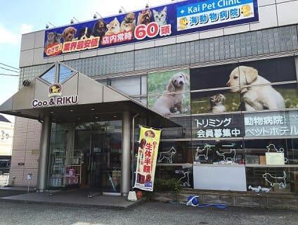 【Coo&RIKU(クーアンドリク) 長野店】ショップ店員さん(アルバイト・パート)募集中♪[長野県長野市]画像