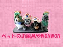 [ペットのお風呂やWONWON]トリマーの募集です♪[正社員/札幌市西区]No.110_bの画像