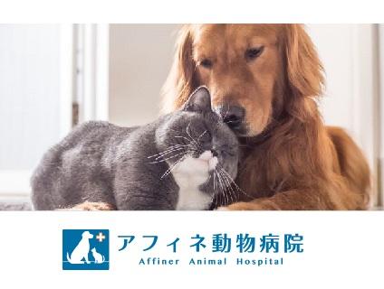 アフィネ動物病院の画像