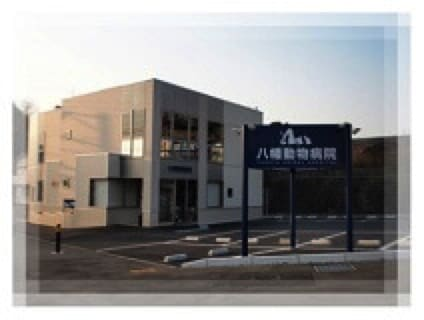 八幡動物病院の画像