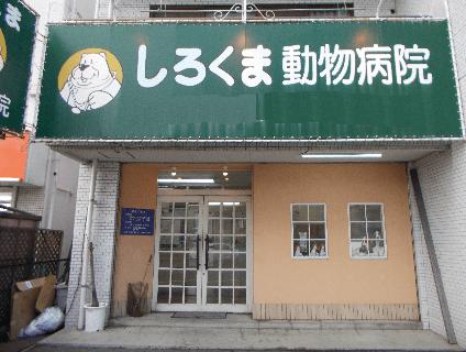 [しろくま動物病院]動物看護師兼トリマー[正社員][広島県安佐北区]の画像